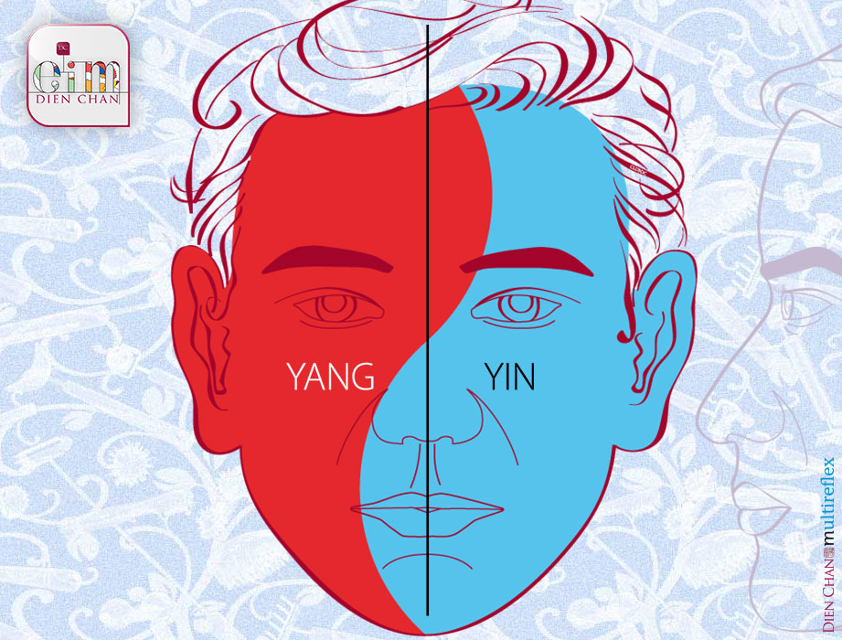 Yin-yang division of the face